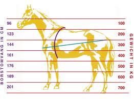 lichaamsgewicht paard