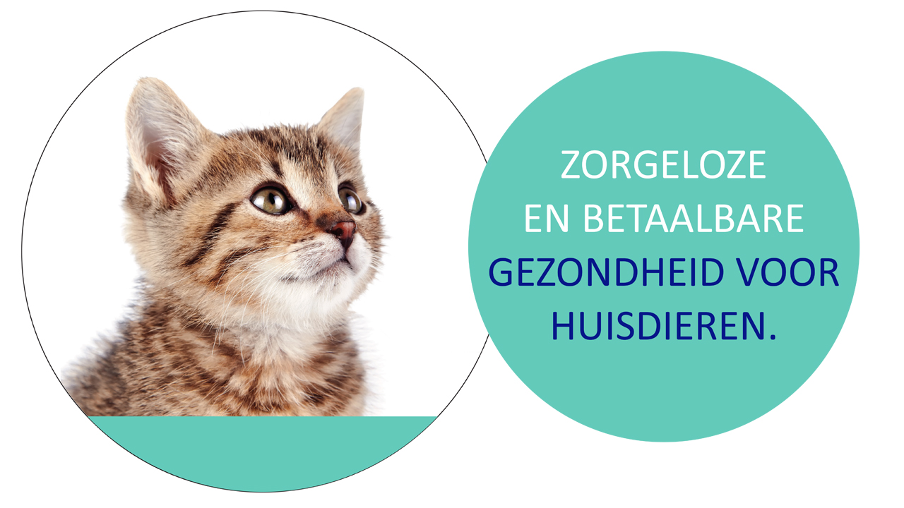 huisdieren zorgplan Dierenkliniek Eikenlaan