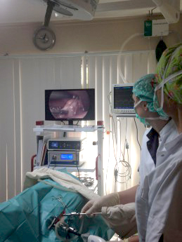 laparoscopie huisdieren