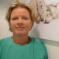 Evelyne Ledeboer -